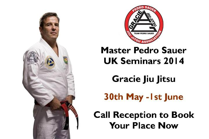 Professor Sauer UK Seminars 2014