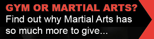 Why Martial Arts!